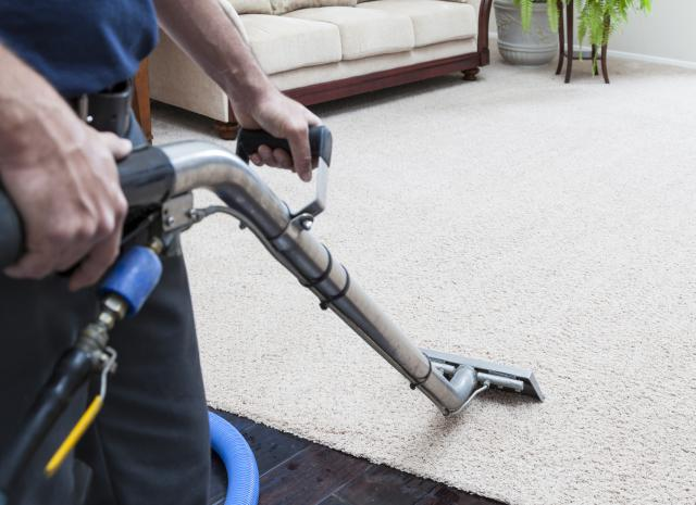 Homepage Carpet Cleaning Delray Beach Fl 561 666 6711